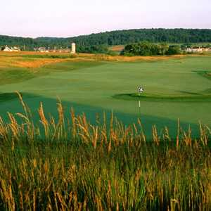 Raspberry Falls Golf & Hunt Club: #11