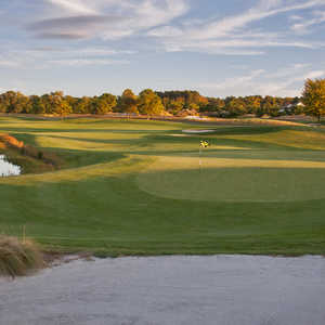 Grizzly at Bear Trap Dunes: #3