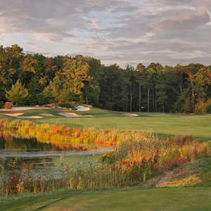 Kodiak at Bear Trap Dunes: #5