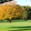 A fall view from Ruggles Golf Course