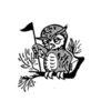 Owl's Creek Family Golf Center - Public Logo
