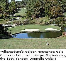Golden Horseshoe Gold